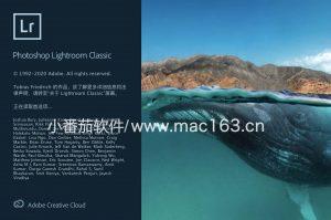 Lr中文破解版下载 摄影调色软件