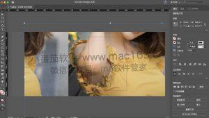 Adobe InDesign 2021 排版设计软件