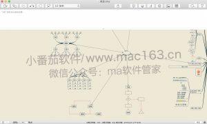iThoughtsX Mac版 思维导图 M1软件