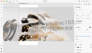 m1 Adobe XD 原型设计软件