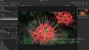 Capture One 20 Pro 飞思软件