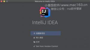 IntelliJ IDEA Ultimate软件界面