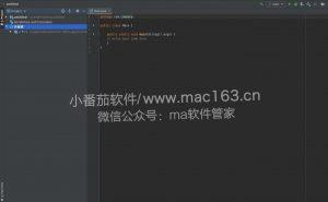 IntelliJ IDEA Ultimate 开发程序 中文破解版下载