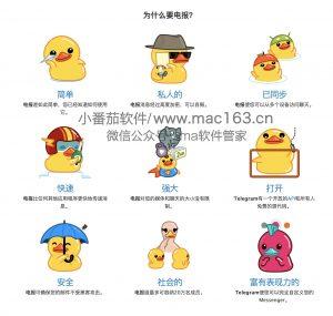 Telegram电报 中文破解版下载