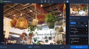 Topaz DeNoise AI 智能图片降噪软件