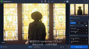 Topaz DeNoise AI 智能图片处理软件