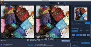 Topaz Gigapixel AI图片放大软件