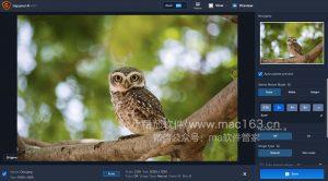 Topaz Gigapixel AI图像无损放大软件 破解版下载
