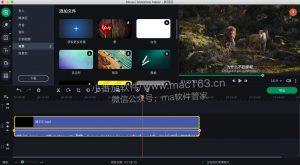 Slideshow Maker Movavi 视频幻灯片制作工具 中文破解版下载
