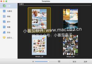 CollageIt 3 Pro 拼贴精灵3 Mac版