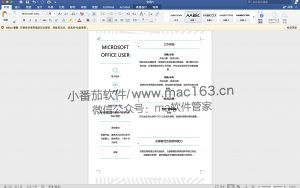 Word 2019 for Mac 办公软件