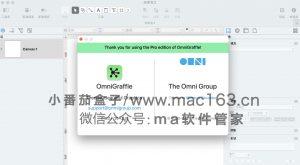 OmniGraffle Pro Mac版 思维导图