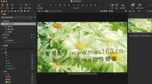 Capture One pro 21 专业摄影调色 破解软件下载