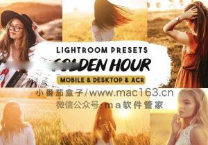 Lightroom预设 下载