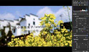 RAW Power 图像处理软件 中文破解版下载