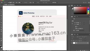 ps M1破解软件下载