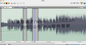 Amadeus Pro 多轨音频编辑器