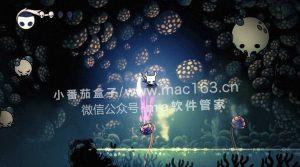 Hollow Knight 空洞骑士 Mac游戏下载