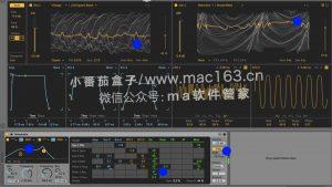 Ableton Live 11 Mac版 中文破解版下载