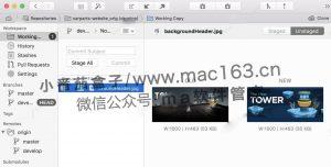 Tower Git客户端 Mac版