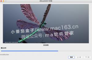 ZBrush2021 中文安装教程 Mac版